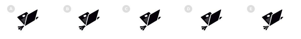 never-north-logo-process-bird-options