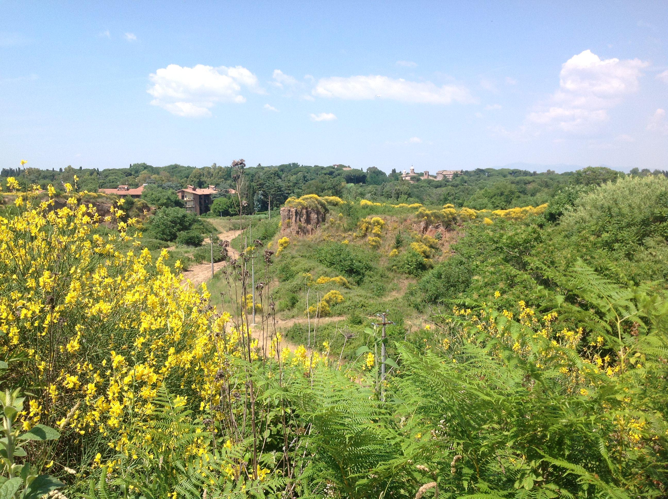 nevernorth-rome-train