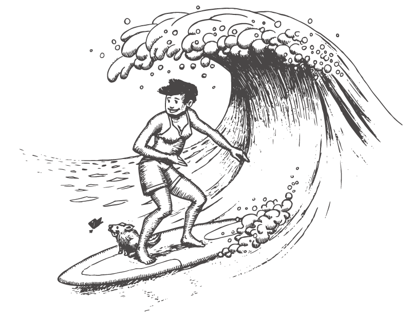 never-north-surfing-waves